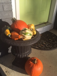 outside gourds
